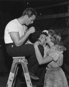"Marlon Brandowith Nick Dennis and Kim Hunter on the set of ""A Streetcar Named Desire""1951Photo by Jack AlbinMPTV - Image 0007_0092"