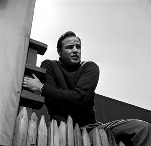 Marlon Brando in the backyard of his Beverly Glen home 1953 Los Angeles, CA © 1978 Sid Avery - Image 0007_1051