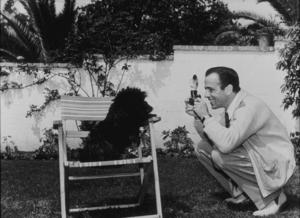 Humphrey Bogart photographing his dog, circa 1947.MPTV - Image 0015_0038
