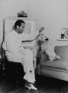 Humphrey Bogart feeding his dog, circa 1947.MPTV - Image 0015_0041