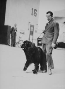 Humphrey Bogart walking his dog, 1948.MPTV - Image 0015_0126