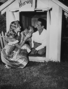 Humphrey Bogart and Lauren Bacall with their pet boxer, Harvey, at their Benedict Canyon home, CA, 1948.MPTV - Image 0015_1031