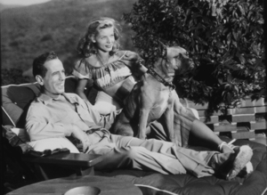 Humphrey Bogart and Lauren Bacall with their pet boxer, Harvey, at their Benedict Canyon home, CA, 1948.MPTV - Image 0015_1090