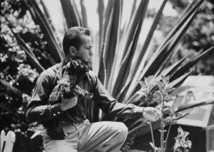 Humphrey Bogart with his dog at home, circa 1940.MPTV - Image 0015_1109