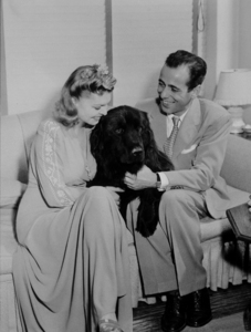 """Humphrey Bogart and his third wife, Mayo Methot, with their black Newfoundland dog, """"Cappy,"""" at home, circa 1944.MPTV - Image 0015_1240"""