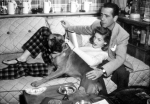 Humphrey Bogart and Lauren Bacall with their pet boxer at home, circa 1945.MPTV - Image 0015_1276