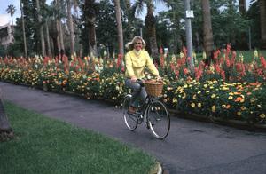 Doris DayMarch 1974 © 1978 Ken Whitmore - Image 0025_2363