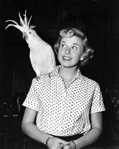 Doris Day 1949** I.V./M.T. - Image 0025_2454