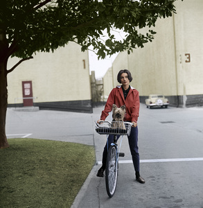 Audrey Hepburn with her pet dog, Famous, on the Paramount studio backlot 1957 © 1978 Sid Avery - Image 0033_0008a