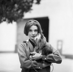 Audrey Hepburn and her dog, Famous on the Paramount Studio backlot1957© 1978 Sid Avery - Image 0033_2269