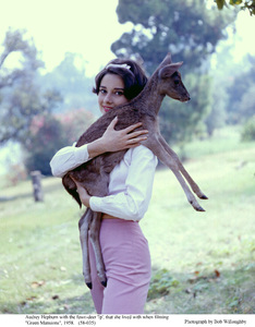 Audrey Hepburn with pet Pippin, 1958. © 1978 Bob Willoughby - Image 0033_2277