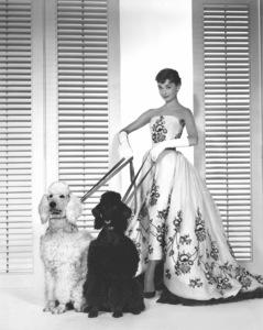 """Audrey Hepburn publicity stillfor """"Sabrina"""" 1954.**I.V. - Image 0033_2439"""