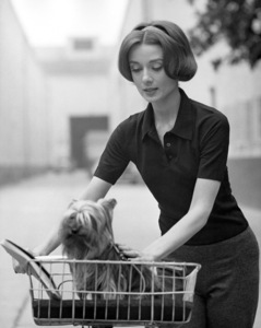 Audrey Hepburn with her dog Famous at Paramount Studio 1957 © 1978 Sid Avery - Image 0033_2458