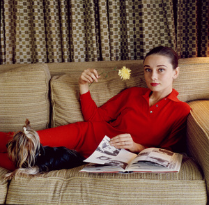 Audrey Hepburn at home with dog, Famouscirca 1958 © 1978 Bob Willoughby - Image 0033_2476