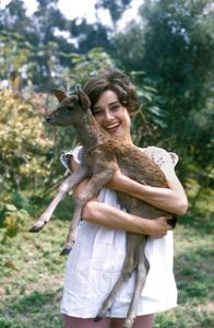 Audrey Hepburn with pet deer, Pippen1958 © 1978 Bob Willoughby - Image 0033_2479