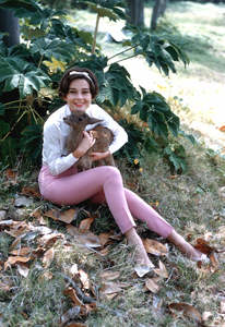 Audrey Hepburn with her pet deer