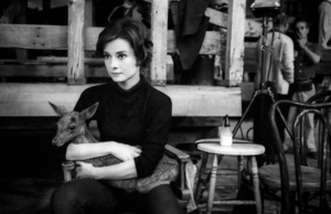 Audrey Hepburn with her pet deer