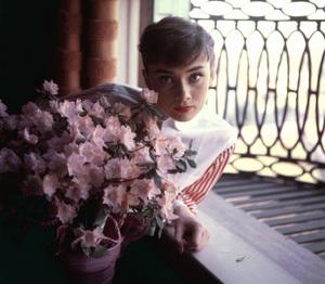 Audrey Hepburn 1953 © 1978 Bob Willoughby - Image 0033_4010