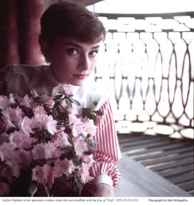 Audrey Hepburn, 1953. © 1978 Bob Willoughby - Image 0033_4011