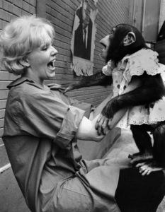 Kim Novak and monkey1961 © 1978 Bob Willoughby - Image 0036_0306_