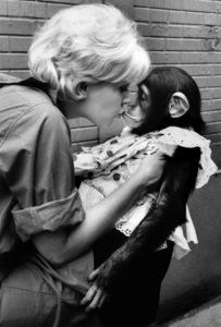 Kim Novak kissing monkey1961 © 1978 Bob Willoughby - Image 0036_0307