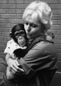 Kim Novak and monkey1961 © 1978 Bob Willoughby - Image 0036_0403
