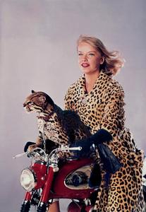 """Anne Francis with her pet Ocelot""""Honey West""""1965**I.V. - Image 0051_0133"""