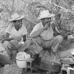 """Mexican Braceros (""""Helping Hands from Mexico"""" - The Saturday Evening Post - August 10, 1957 - volume 230, number 6)1957© 1978 Sid Avery - Image 0063_0014"""