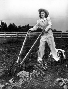Lucille Ball on the farmcirca 1943 - Image 0069_0885
