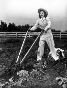 Lucille Ball on the farmcirca 1943 - Image 0069_0885