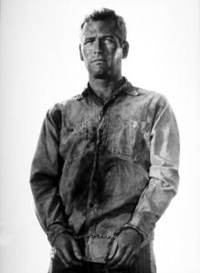 "Paul Newman in ""Cool Hand Luke.""1967 Warner - Image 0070_0221"