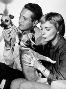 Paul Newman & Joanne Woodward,c. 1960.Photo by John Engstead - Image 0070_0223