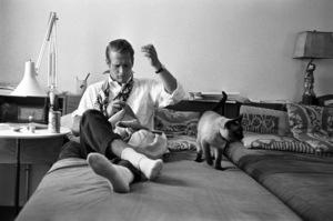 Paul Newman1956© 1978 Sanford Roth / A.M.P.A.S. - Image 0070_2168