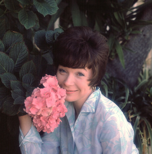 Shirley MacLaine1966 © 1978 Gene Howard - Image 0086_0347