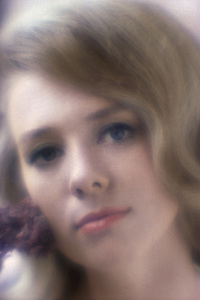 Inger Stevens1963 © 1978 Sid Avery - Image 0088_0070