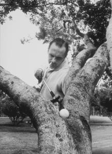 Bob Newhart spoofing a golfer 1961 © 1986 Sid Avery  - Image 0092_0136