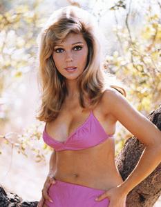 Nancy Sinatracirca 1965**I.V. - Image 0336_0184