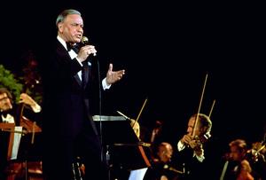 Frank Sinatra performing. © 1980 Gunther - Image 0337_1352
