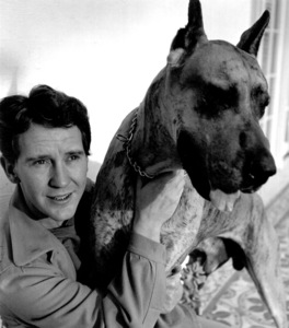 Burgess Meredith with his Great Danec. 1940