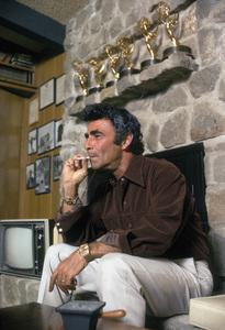 Rod SerlingAt HomeFebruary 1972 © 1978 Gene Trindl - Image 0573_0045