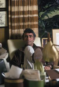 Rod SerlingAt HomeFebruary 1972 © 1978 Gene Trindl - Image 0573_0046