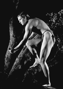 Johnny Weissmuller1936Photo by George Hurrell - Image 0579_0101