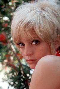 Goldie Hawn1968 © 1978 Gene Trindl - Image 0616_0126