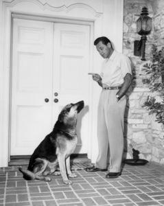 William Holden circa 1955** I.V./M.T. - Image 0623_0200