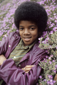 Michael Jackson1971Photo by Henry Diltz** F.R.  - Image 0628_0014