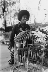 Michael Jackson1976 © 1978 Bobby Holland - Image 0628_0136