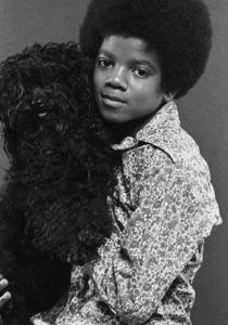 Michael Jackson 1969 © 1978 Gene Trindl - Image 0628_0164