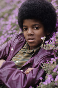 Michael Jackson 1971 Photo by Henry Diltz ** F.R. - Image 0628_0204