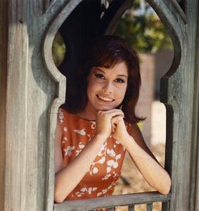 Mary Tyler Moore1969** I.V. - Image 0645_0102