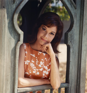 Mary Tyler Moore1969** I.V. - Image 0645_0103